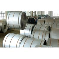 Quality 310S Hot Rolled Stainless Steel Sheet In Coil , Hot Rolled Steel Strips for sale
