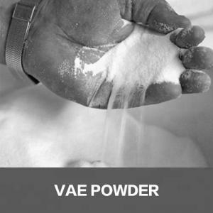 China Acrylic copolymer powder redispersible polymer powder RDP on sale