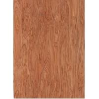 Quality Bintangor Veneer for Furniture for sale