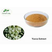 Quality Natural Pure Yucca Plant Extract Powder 50% Sarsaponin for Odor Removing for sale