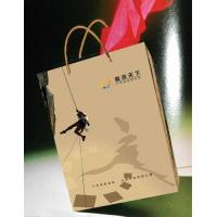 Quality Carry Bag / Paper Bag (BS-HB03) for sale