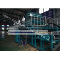 Quality High Automation Egg Carton Making Machine For Egg Tray / Fruit Tray / Wine Tray for sale
