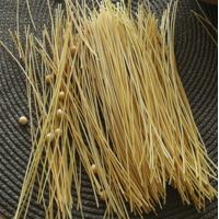 Quality high fiber and high protein black rice fusilli pasta exporter and supplier for sale