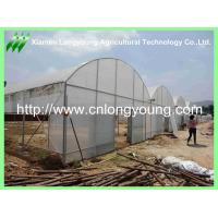 Buy cheap Used Agriculture Greenhouse from wholesalers