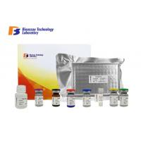Quality Oem 96 Wells PDGF Sandwich Porcine ELISA Kit With High Precision And Specificity for sale