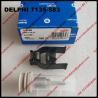 DELPHI NOZZLE CVA KIT 7135-583, nozzle J341 valve 28439531 for injector R00301D ,EMBR00301D ,A6710170121,6710170121 for sale