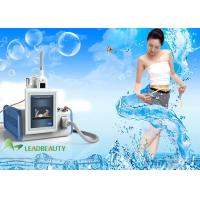 one standard handle cryo slimming machine/portable cryolipolysis machine