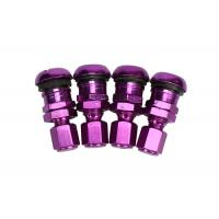 Buy Air Cover Tire Valve Caps Wheel Decoration For Clamp Or Snap In Valve at wholesale prices
