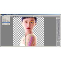 Quality Best Lenticular Software for making 3d/flip/morphing/zoom/animation Lenticular Printing for sale