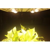 Quality 415W LED Grow Lights Full Spectrum Growing From Vegetate To Bloom , Grow Rooms / Tents for sale