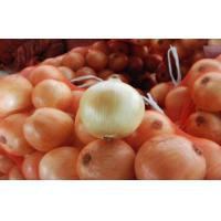 China 70 - 90mm White Natural Fresh Onion Sweet Round Shape For Hair Loss , Fresh Vegetable, Fine organization, Spicy thick on sale