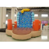 Quality Inflatable Climbing Wall And Slide 5 X 3.8 X 4.5m , Big Blow Up Rock Climbing Wall for sale