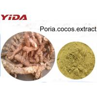 Quality 100% Natural Poria Cocos Powder Extract Brownish Yellow Color Food Grade for sale