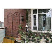 Quality Powder Coated Garden Plant Trellis Beautiful European Style Fit Outdoor Vine Plant for sale