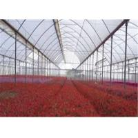 Quality Transparent Greenhouse Coverings Polyethylene Film Prevent Dripping Onto Plants for sale
