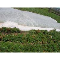 Quality Eco Friendly Agriculture Non Woven Fabric With 1% - 4% UV Treated OEM / ODM Available for sale