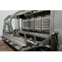 Quality Automatic Energy Saving Paper Pulp Molding Machine For Molded Pulp Fruit Tray for sale