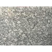 Buy Spary White Polished Granite Floor Tiles Fashionable Appearance at wholesale prices