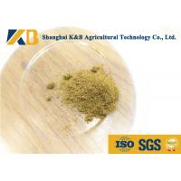 Quality 100% Pure Fish Protein Powder Natural Fish Smell For Mixed Feed Material for sale