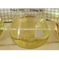 Quality High Purity Injectable Anabolic Steroids For Bulking , Testosterone Sustanon 200 MG/ML for sale