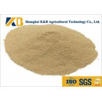 Quality Non - Allergen Natural Feed Additive / Chicken Feed Protein High Biological Value for sale