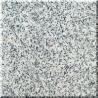 Light Grey Granite for sale