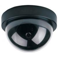 Quality Dome Camera (JS-310Y) for sale