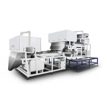 Quality Multifunction Belt Color Sorter For Nut / Sunflower / Cashew / Plastic Processing for sale