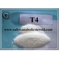 Quality T4 Fat Loss Hormones Chemical Raw Material CAS 55-03-8 Levothyroxine Sodium / T4 for sale