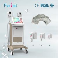 Quality Factory Price champagane painting 15 inch 2 handles Cryolipolysis Slimming Machine for sale