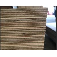 Buy Marine Grade Commercial Plywood Okoume Face / Back With Phenolic Glue at wholesale prices