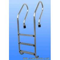Quality Pool Ladder for sale