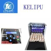 Quality Electronic Intelligent 12 V Egg Printer Machine With One Year Warranty Time for sale