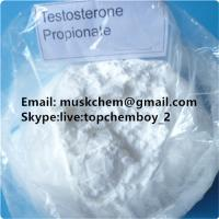 Building Muscle Testosterone Propionate Powder Anabolic Steroids Test P CAS 57-85-2