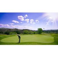 Professional Golf Packages Orlando Florida Various Playing Styles Well Equipped Facility for sale
