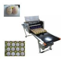 Quality Multiple Nozzle High Resolution Printer For Food Industry Egg Date Stamp Machine  for sale
