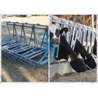 Quality Durable Feeding Equipment Goat Head Lock Fence Powder Coated for sale