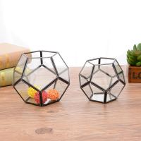 China Football Shaped Glass and Copper Geometric Terrarium Air Plant Pot Succulent Planter for sale