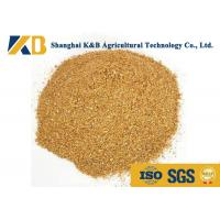 Quality Feed Grade Healthy Corn Protein Powder ISO HACCP Certificate For Fodder for sale