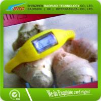 Buy Silicone RFID Wristband/RFID Bracelet at wholesale prices