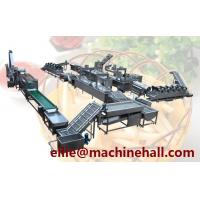 Quality Frozen French Fries Processing Line Making Equipment With Factory Price for sale