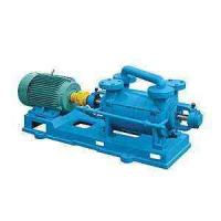 Quality 2SK Two-Stage Water Ring Vacuum Pump for sale