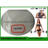Buy cheap CAS 566-19-8 Muscle Building Anabolic Steroid Powder 7-KETO-DHEA For Weight Loss from wholesalers