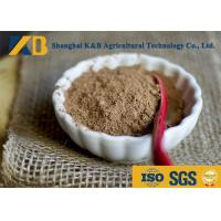 Buy Nature Smell Brown Rice Protein Supplement Ease Digestible High Biological Value at wholesale prices