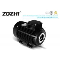 China HS 112M3-4 6.2KW 8.5hp Hollow Shaft Motor Direct Pump Mounting For Industrial Cleaning on sale