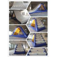 Quality Inflatable Freefall Waterslide for sale