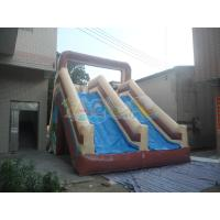 Quality Wet N Dry Inflatable Slide for sale