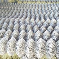 Quality China Manufacturer export Chain Link Fence,temporary fencing, deer fence, horse fence for sale