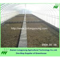 Quality tomato greenhouse for sale