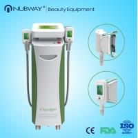BIG PROMOTION!!2015 newest cryolipolysis for sale